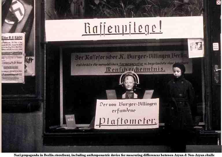 Nazi store