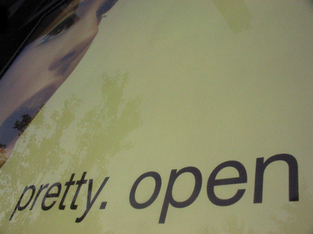 Pretty_open_2